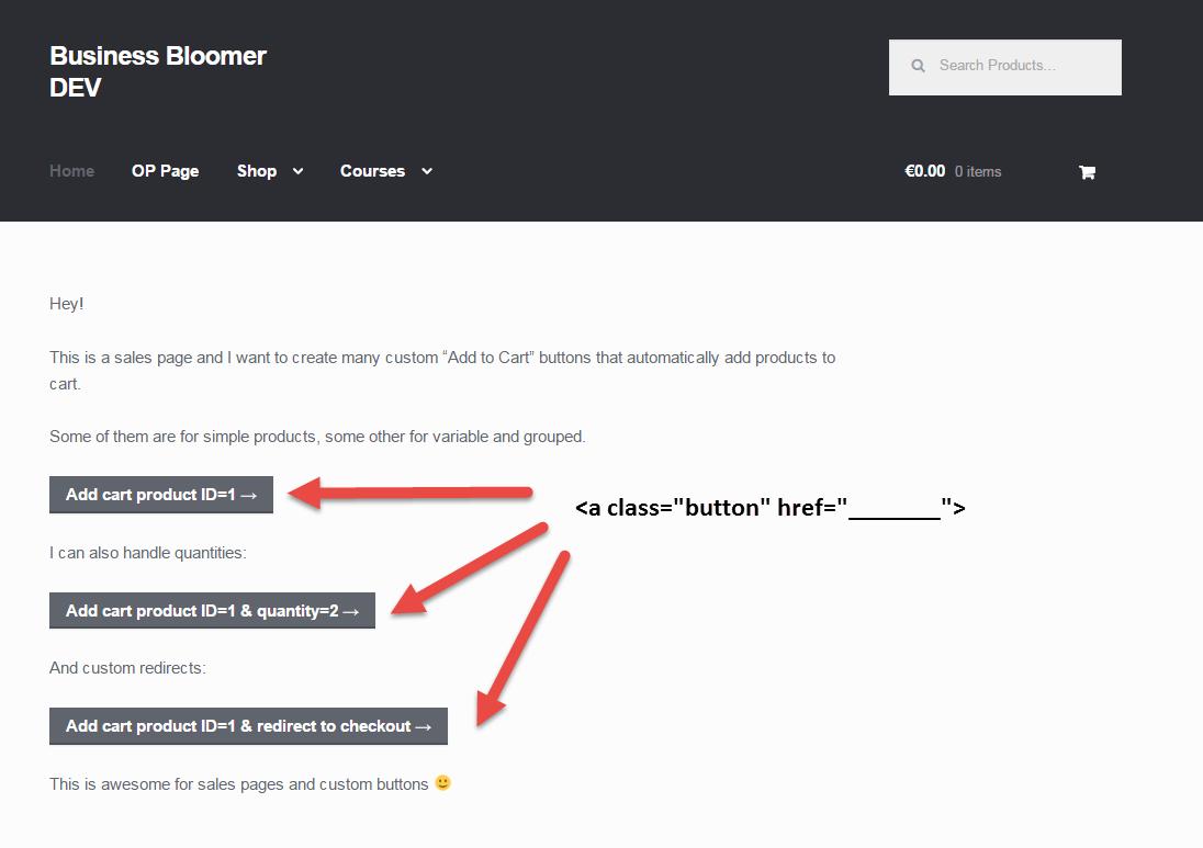 how to enter new wordpress admin
